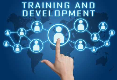 Image of Training and Development concept with hand pressing social icons